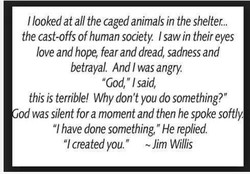 I looked at all the caged animals in the shelter... 