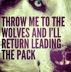 THROW ME TO THE 