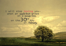 i will stop loving you, 