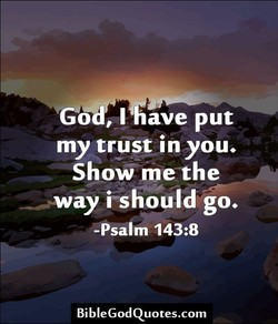 ave put 