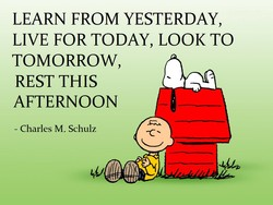 LEARN FROM YESTERDAY, LIVE FOR TODAY, LOOK TO TOMORROW, REST THIS AFTERNOON - Charles M. Schulz nnng