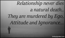 Relationship never dies 