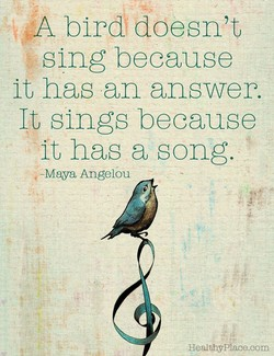 A bird doesn't 