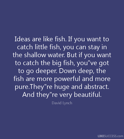 Ideas are like fish. If you want to 