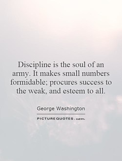 Discipline is the soul of an 