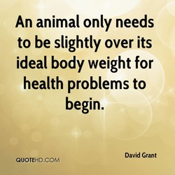 An animal only needs 