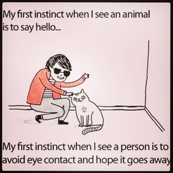 My first instinct when I see an animal 