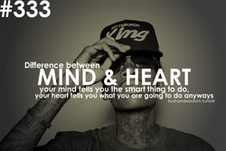 #333 