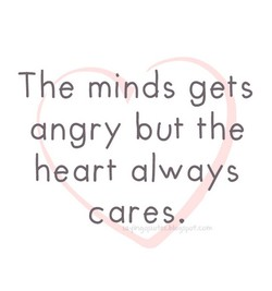 The minds gets 