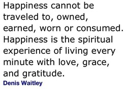 Happiness cannot be 