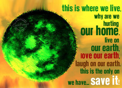 this is where we live, 