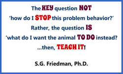 The HEY question NOT 