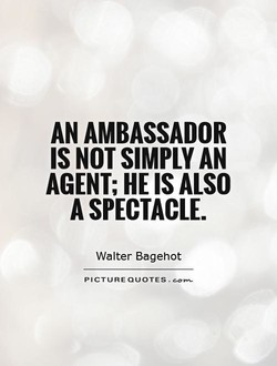 AN AMBASSADOR 