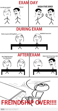 bro did you study?! 