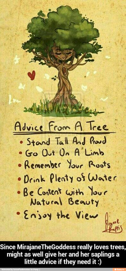 Adv•tce 