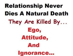 Relationship Never 
