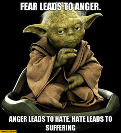 FUR 