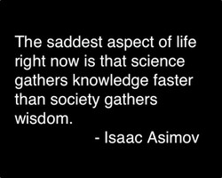 The saddest aspect of life right now is that science gathers knowledge faster than society gathers wisdom. - Isaac Asimov