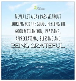 NEVER A WITHOUT 