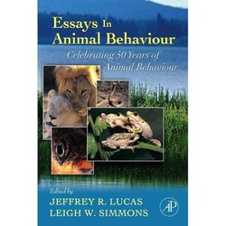 Essays In 