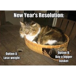 New Year's Resolution: 