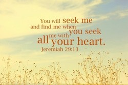 You will seek me 