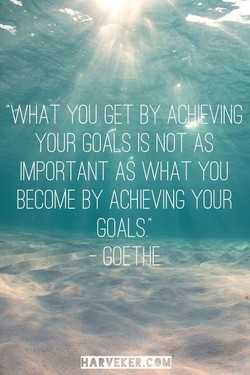 YOUR GOA1s IS NOT AS 