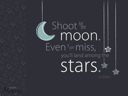 Shoot 