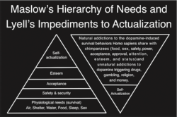 Maslow's Hierarchy of Needs and 