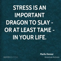 STRESS IS AN 