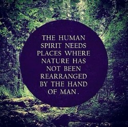THE HUMAN 
