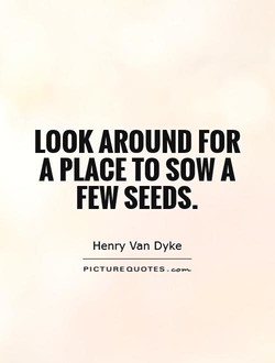 LOOK AROUND FOR 