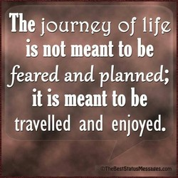 The journgg of life 