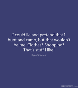 I could lie and pretend that I 