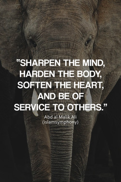 eeSHARPEN THE MIND, 