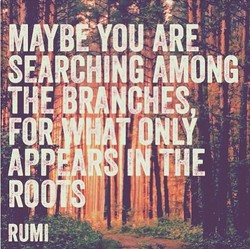 A CHES 