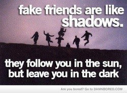 fake friends are like 