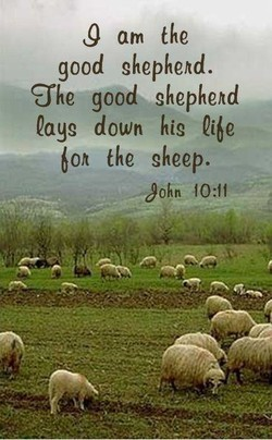 J am the 