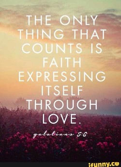 THE-ONLY 