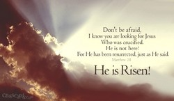 Don't be afraid, 