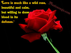 q.ove is much like a wild rose, 