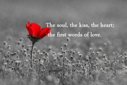 The soul, the kiss, the heart; 