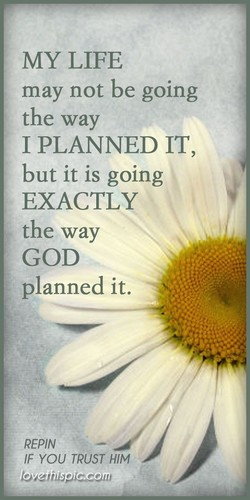 MY LIFE 