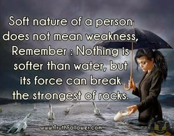 Soft nature of a person 