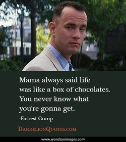Mama always said life 