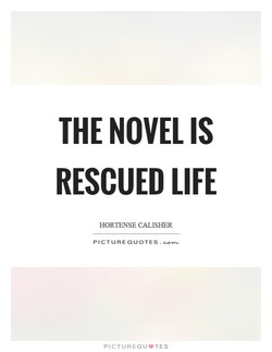 THE NOVEL IS 