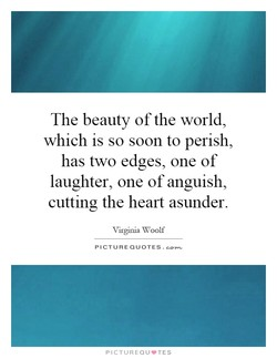 The beauty of the world, 
