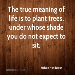 The true meaning of 