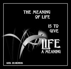 seu SE 