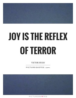 JOY IS THE REFLEX 